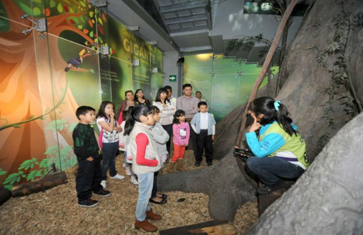Museos para niños