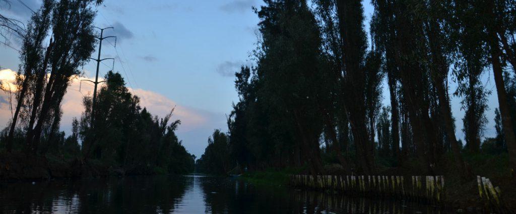 Día de muertos en Xochimilco, ayuda a San Gregorio