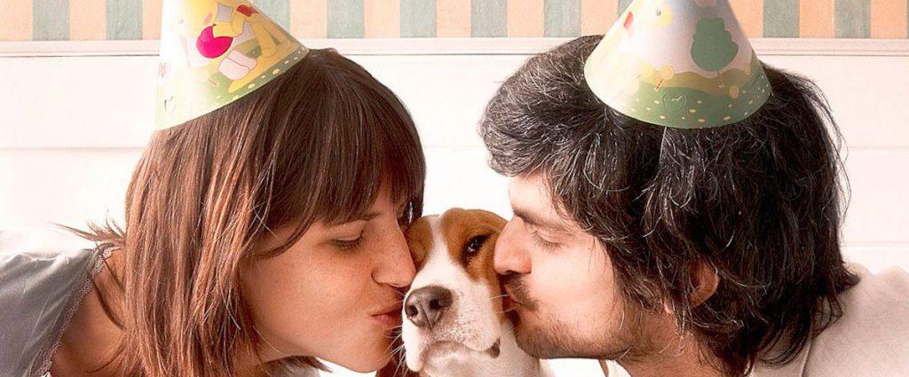 perros humanos mascotas